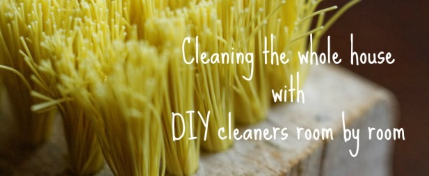 Cleaning the whole house with DIY cleaners room by room