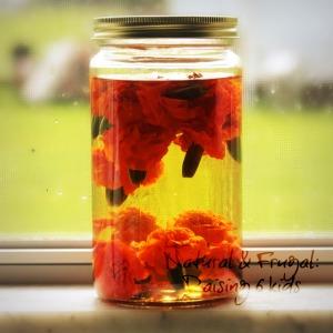 marigolds 6
