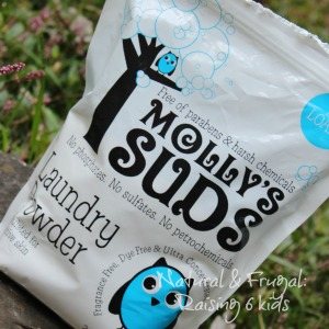 Mollys suds 3