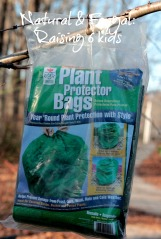 Garden Harvest Supply Plant Protector