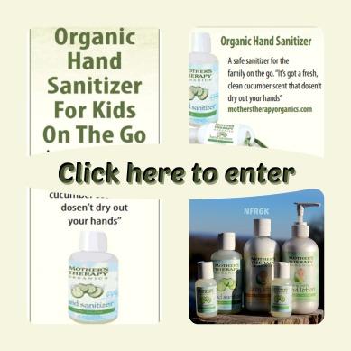 Hand Sanitizer Natural Frugal Raising 6 Kids