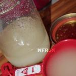sourdough starter 2