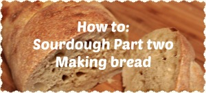 sourdough bread header