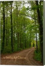 canvas road
