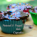 NFR6K cupcakes