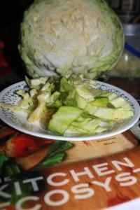 coleslaw 3