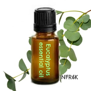 eucalyptus eo bottle