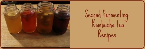 Second Fermenting Kombucha tea Recipes