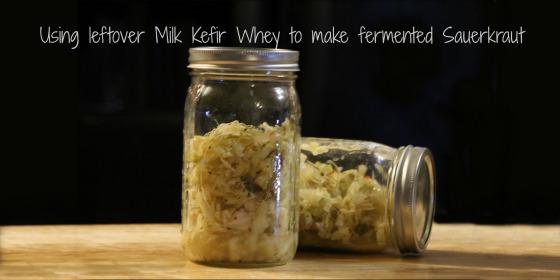 Using leftover Milk Kefir Whey to make fermented Sauerkraut
