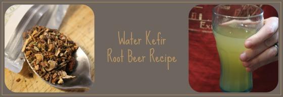 Water Kefir Root Beer Recipe