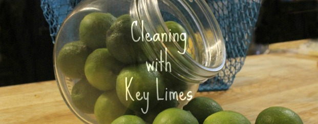 Cleaning with Key Limes, DIY Cleaner recipes.
