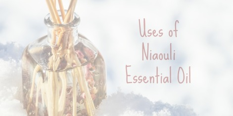 Uses of Niaouli Essential Oil